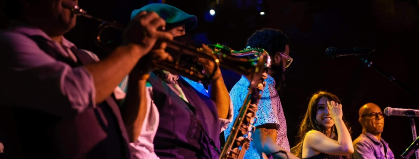 Royal Dukes Band at 502 Bar